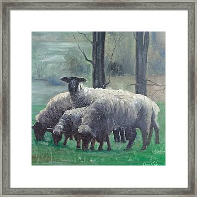 Framed Print featuring the painting The Family Of Sheep by John Reynolds