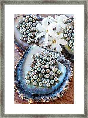 The Famous Black Pearls Of Tahiti Framed Print by Matteo Colombo