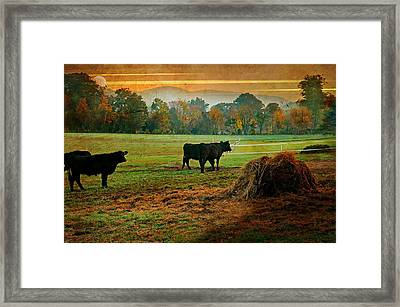 The Far Side Framed Print