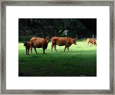 The Farm Framed Print by Greg Patzer