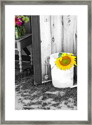 The Farm Stand Framed Print by Rosemary Aubut