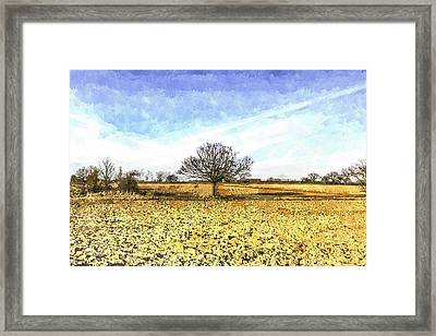 The Farm Tree Framed Print