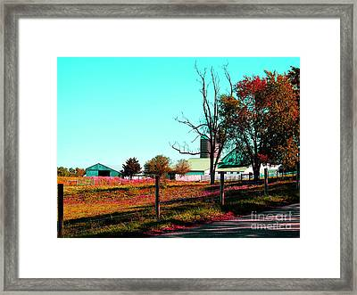 The Farmland In Autumn Framed Print by Tina M Wenger