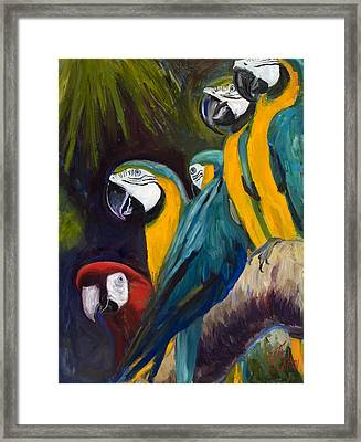 The Feisty One Framed Print by Billie Colson
