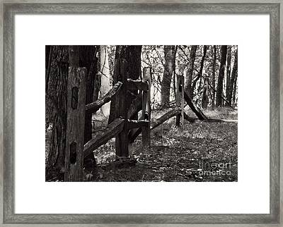 Framed Print featuring the photograph The Fence by JRP Photography