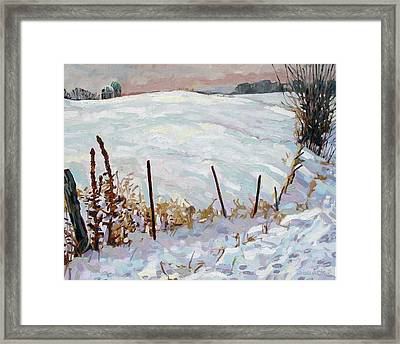 The Fence Line Framed Print by Phil Chadwick
