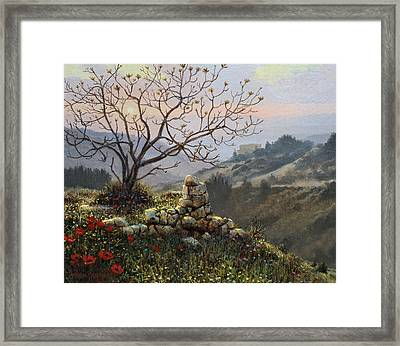 The Fig Tree   Mt Carmel Framed Print by Graham Braddock