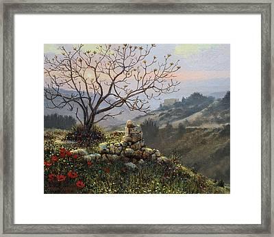 The Fig Tree   Mt Carmel Framed Print by Graham Braddock