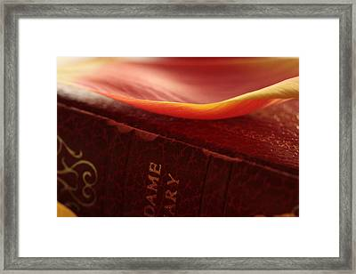 The Final Chapter Framed Print by Connie Handscomb