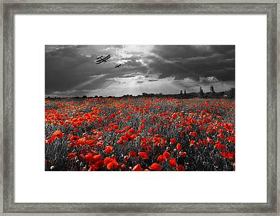 The Final Sortie Aircraft Over Field Of Poppies Wwi Version Framed Print by Gary Eason