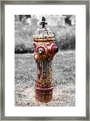 Framed Print featuring the photograph The Fire Hydrant by Ricky L Jones