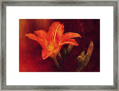 The Fire Inside...  Framed Print by Maria Angelica Maira