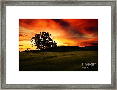 the Fire on the Sky Framed Print by Angel  Tarantella