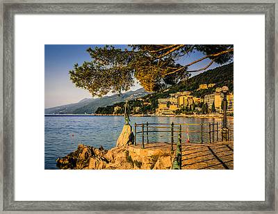 The First Lady Framed Print by Chris Smith