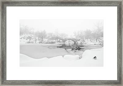 The First Snow Of Central Park Framed Print