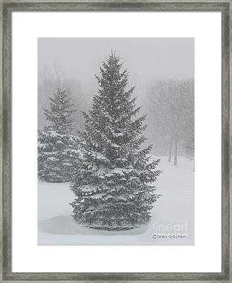 The First Snow Of Christmas Framed Print