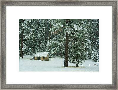 The First Snowfall Framed Print