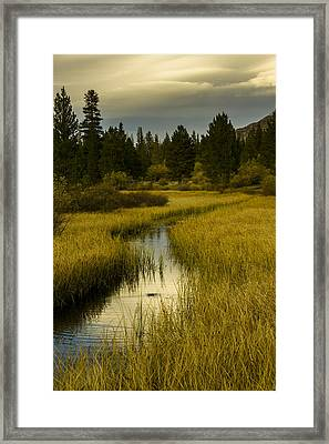 The Fish Are Biting At Rock Creek Framed Print