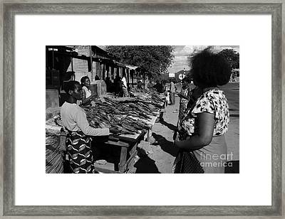 The Fish Market Framed Print