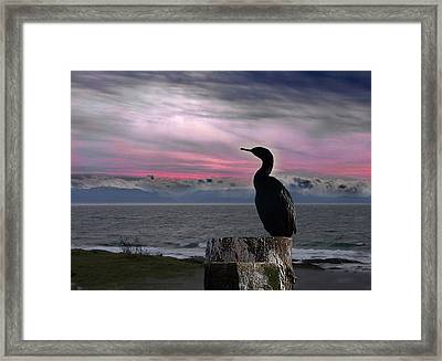 The Fisherman Rests Framed Print