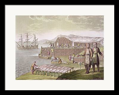 Sailboats In Harbor Drawings Framed Prints