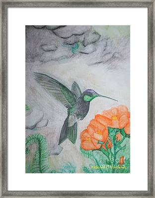 The Flight Of A Hummingbird Framed Print by Rebecca Christine Cardenas