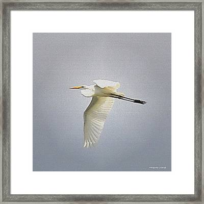 The Flight Of The Great Egret With The Stained Glass Look Framed Print