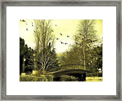 The Flock Near Bridge  Framed Print by Rick Todaro