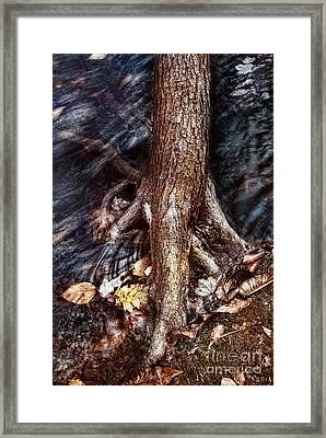 The Flood Framed Print by HD Connelly