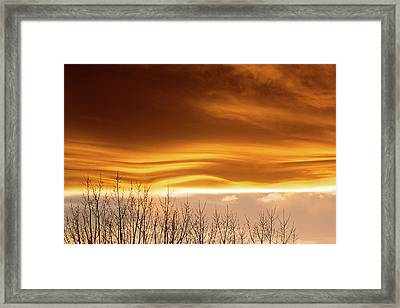 The Flow Framed Print by Jim Garrison