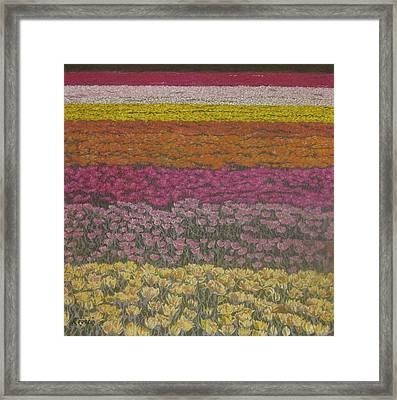 The Flower Field Framed Print