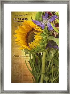 The Flower Market Framed Print by Priscilla Burgers