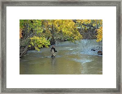The Fly Fisherman Framed Print by Kay Novy