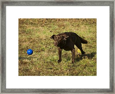 The Flying Lab Framed Print by Jean Noren