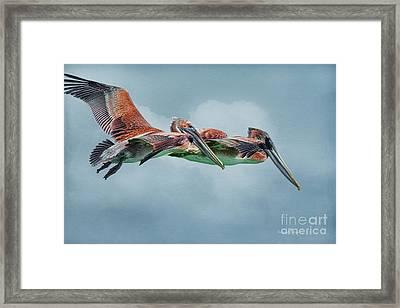 The Flying Pair Framed Print by Deborah Benoit