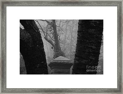 Framed Print featuring the photograph The Fog by Steven Macanka