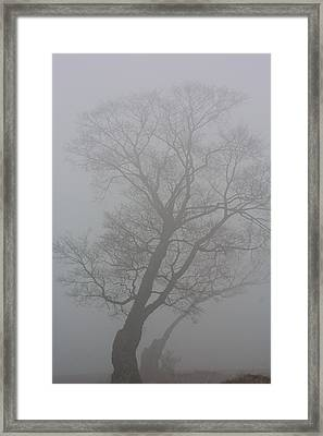 The Foggy Dew Framed Print by James Canning