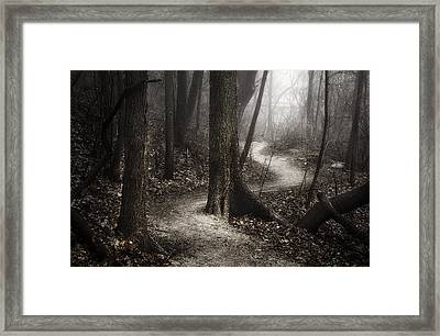 The Foggy Path Framed Print