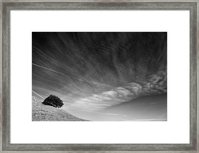 The Fool On The Hill Framed Print by Peter Tellone