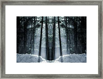The Forest Is Alive Framed Print by Dan Sproul