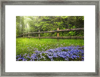 The Forest Is Calling Framed Print by Debra and Dave Vanderlaan