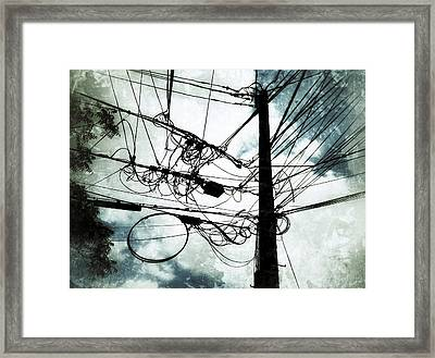 The Forest Of Queens Framed Print