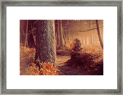 The Forest Whispers Autumn Framed Print by Harmony Lawrence