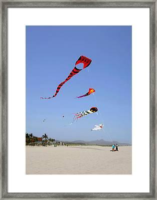 The Forgotten Joy Of Soaring Kites Framed Print by Christine Till