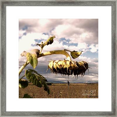 The Forgotten Of Van Gogh - 2 Framed Print by Flow Fitzgerald