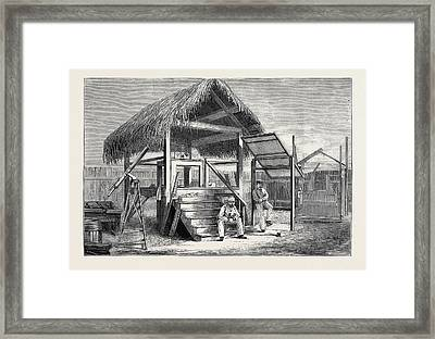 The Forthcoming Transit Of Venus Shed At Honolulu Framed Print