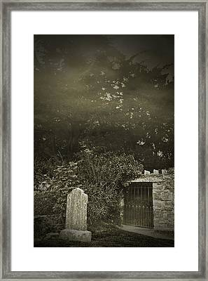 The Fortingall Yew Framed Print by Jane McIlroy