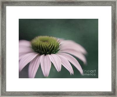 The Fountain  Framed Print by Irina Wardas