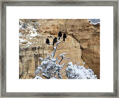 Framed Print featuring the photograph The Four Crows by Laurel Powell