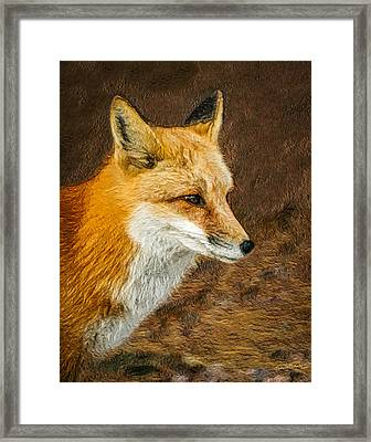 The Fox 5 Framed Print